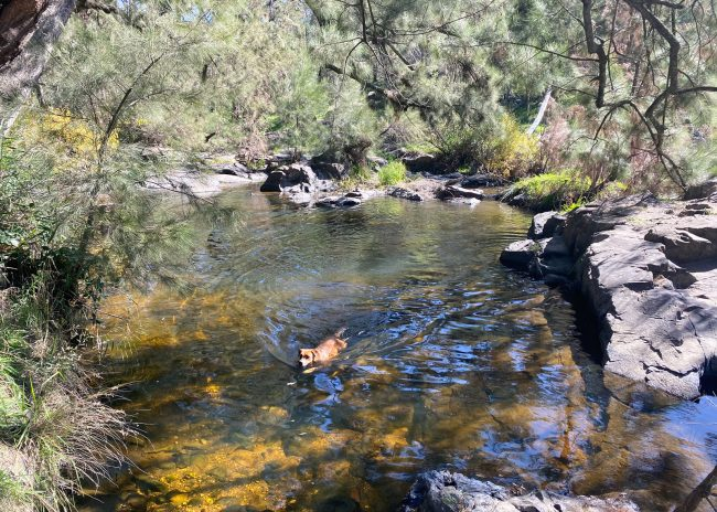 Summer Swimming Spots In The Central West