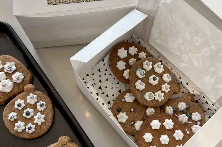 Kid's Cooking – Christmas Spiced Cookies