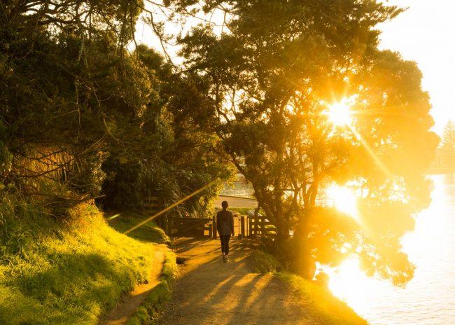 NZ Beachside Escape: Mount Maunganui And Surrounds
