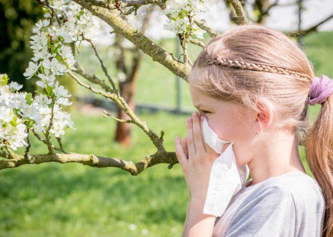 Hay Fever (Allergic Rhinitis), How To Treat