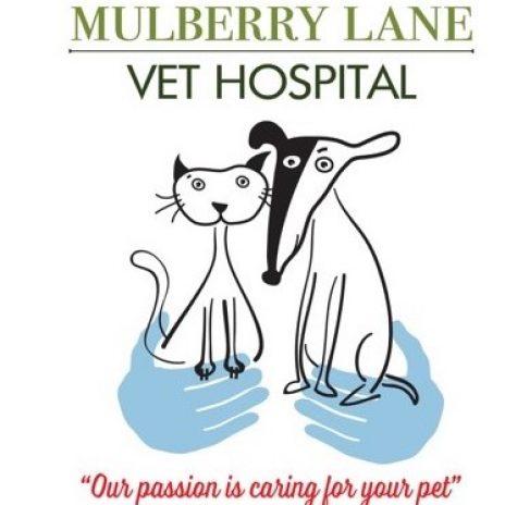 Mulberry Lane Vet Hospital